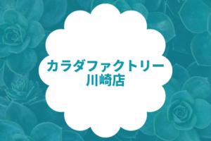 カラダファクトリー 川崎店