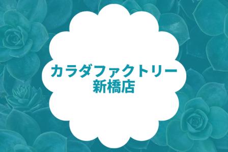 カラダファクトリー 新橋店