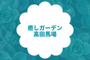 癒しガーデン 高田馬場