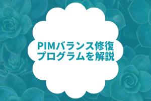 MJG整骨院のPIMバランス整復プログラム