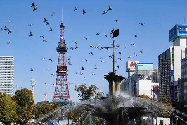 札幌で人気の小顔矯正